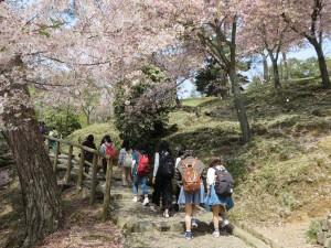 奈良公園のなかをてくてく